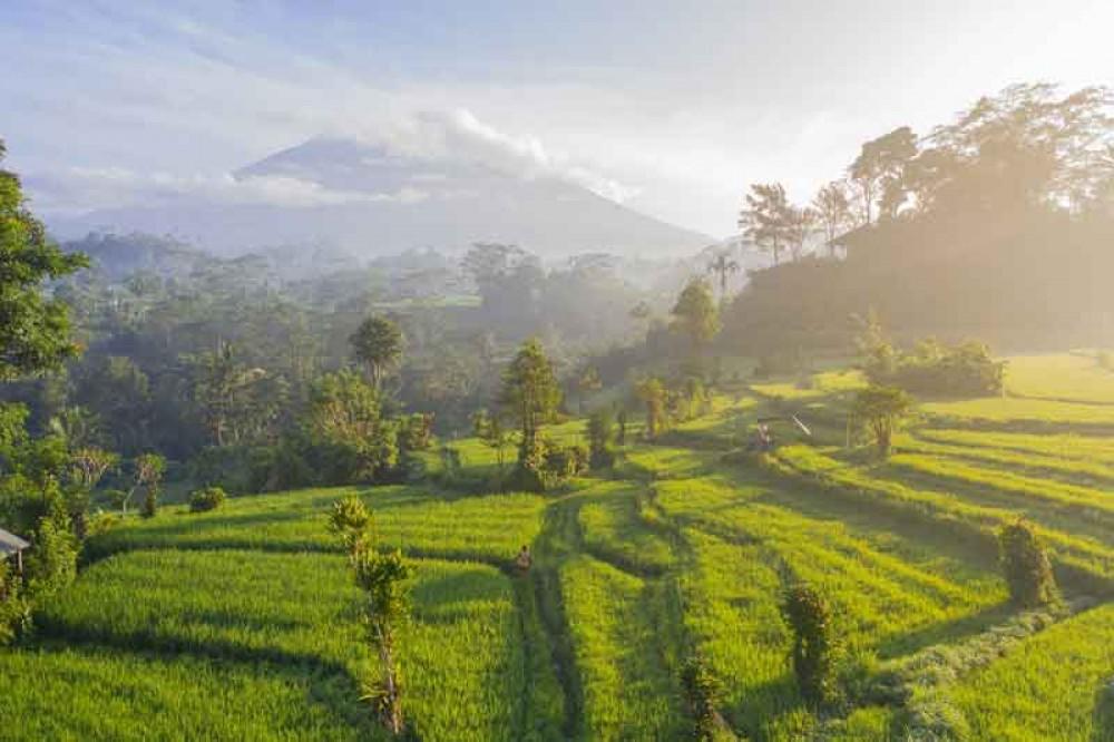 Scenic Panorama between Rice Terrace and Mountain in Sidemen