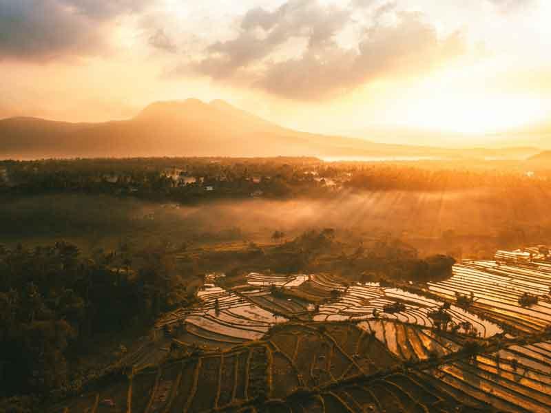 Bali Sidemen Rice Field