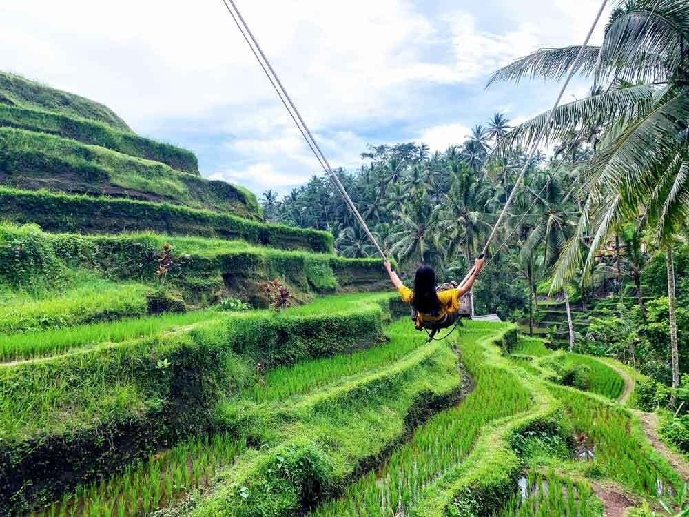 Bali Tegalalang Rice Terrace Swing