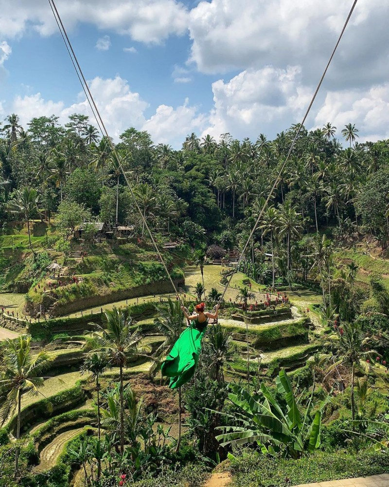 Swing on Tegalalang Rice Terrace