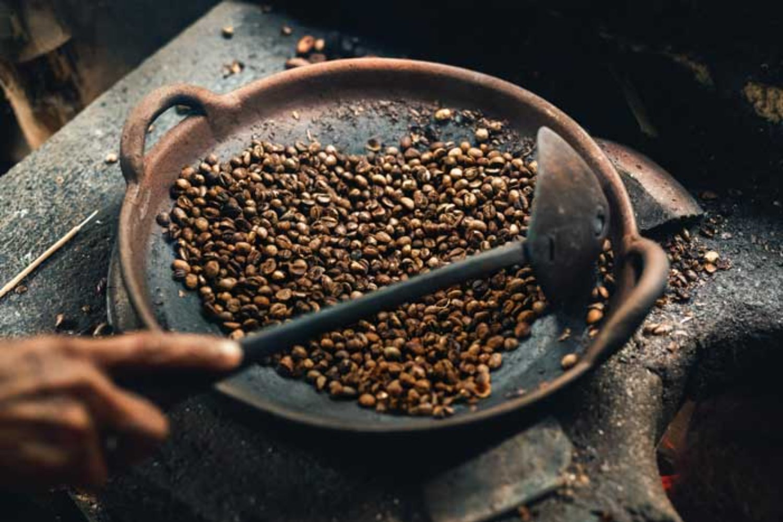 Knowing About Bali Kintamani Coffee Plantation