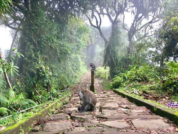Walking Up 1.700 Stairs to Find the Splendor of Lempuyang Temple