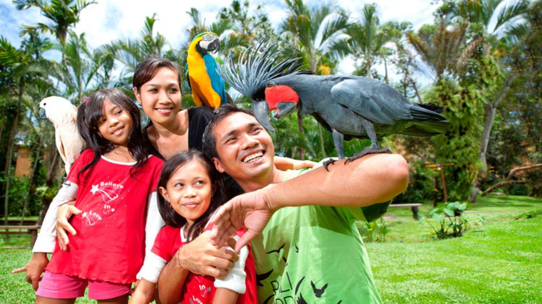 Bali Bird Park – Harga Tiket, Atraksi Burung, Dan Jadwal Show