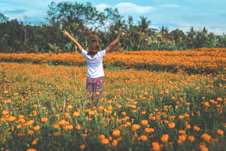 Kebun Bunga Marigold Yang Instagenik dan Wajib Dikunjungi Di Bali