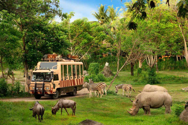 Bercengkrama Dengan Berbagai Satwa di Taman Bali Safari