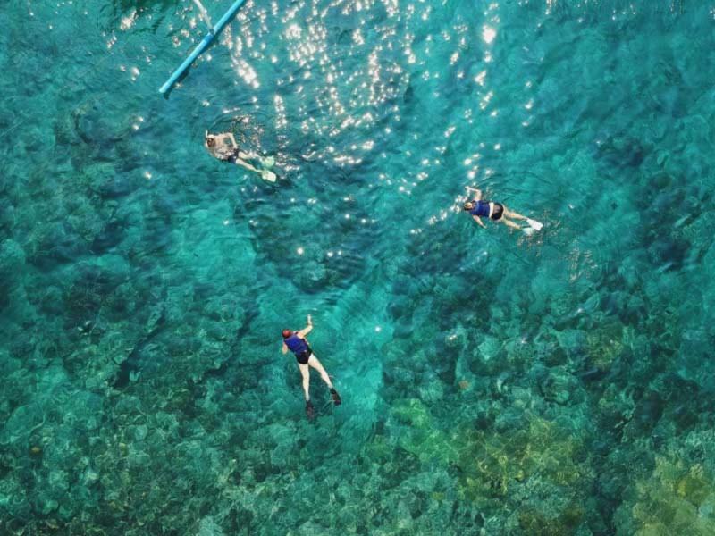 Aktivitas Snorkeling di Bali