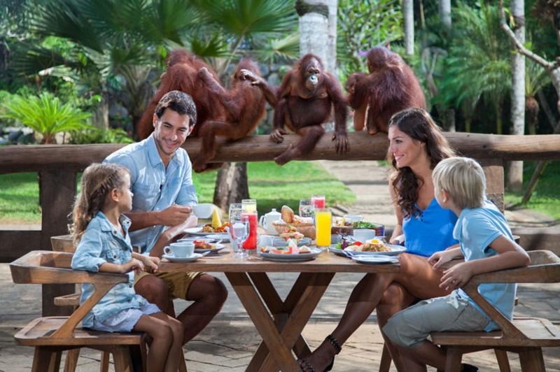 Breakfast with Orangutan di Bali Zoo Park