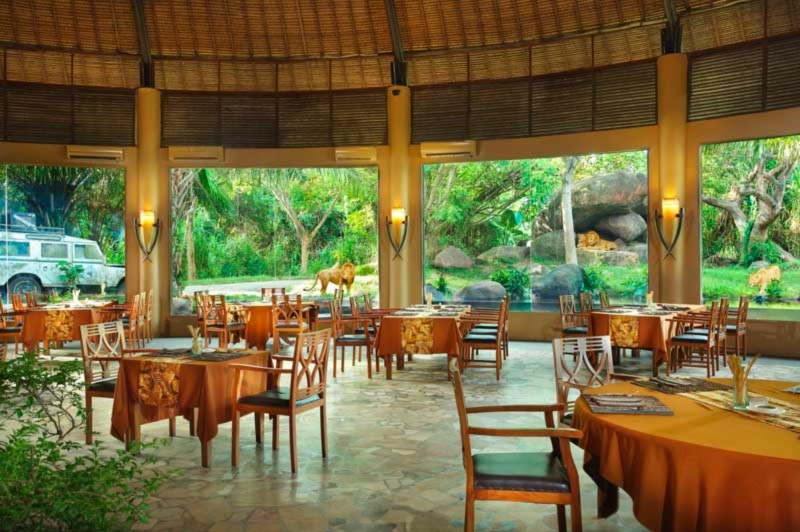 Breakfast with the Lions di Taman Bali Safari
