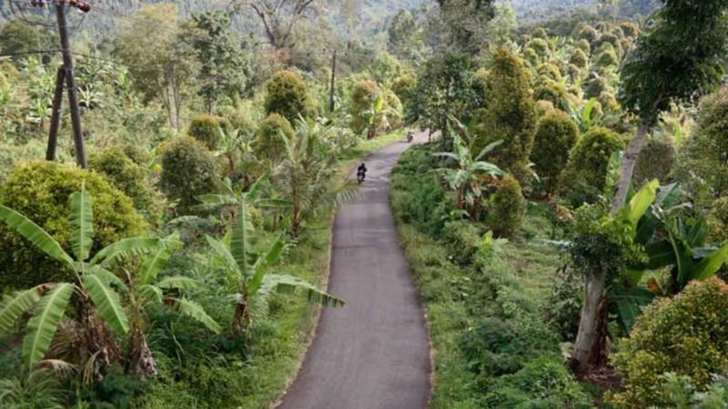 Cara Memberi Tip Untuk Driver di Bali