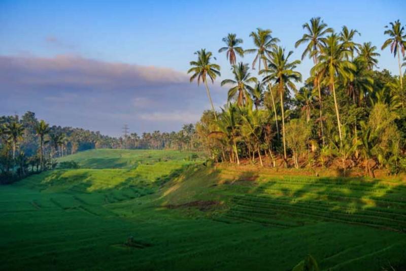 Desa Pupuan Bali