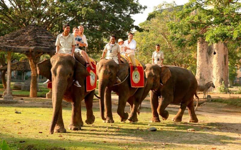 Elephant Back Safari di Taman Safari Bali