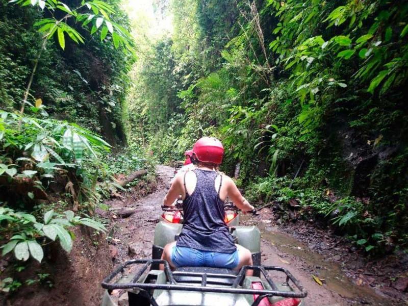 Hutan Di Kuber Bali Adventure