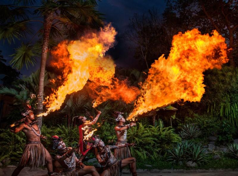 Jadwal Acara Di Bali Zoo Park