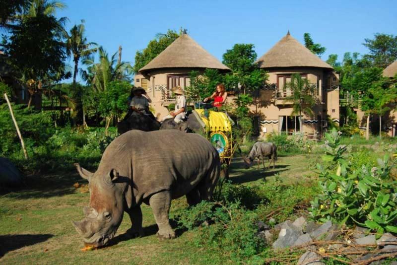 Kebun Binatang Bali Safari