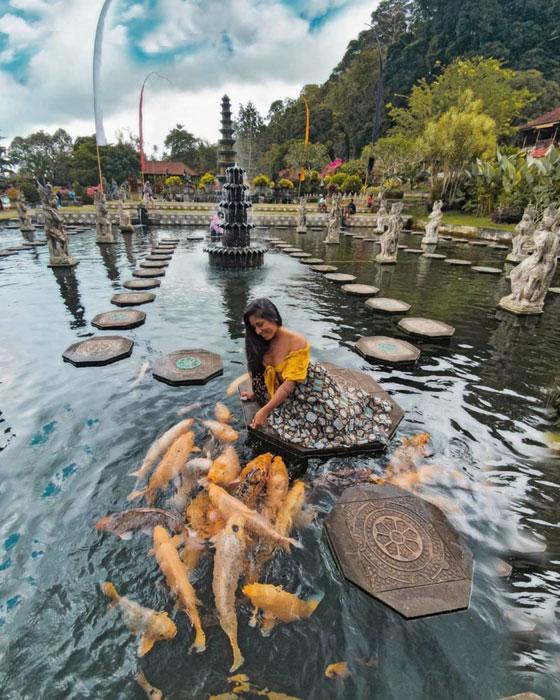 Pengunjung Memberi Makan Ikan Di Tirta Gangga