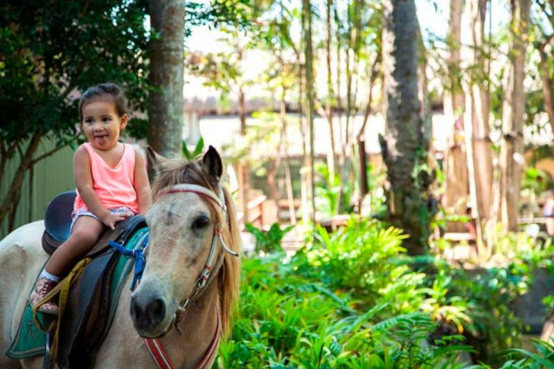 Peta Lokasi Bali Zoo Park