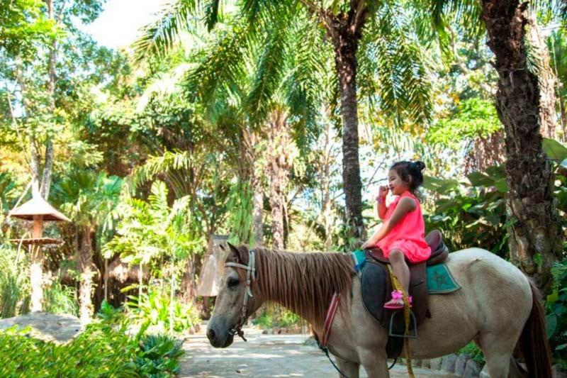 Pony Ride di Bali Zoo Park