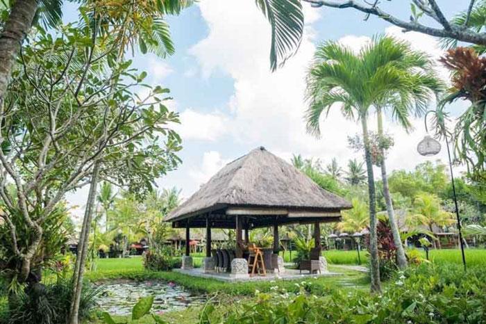 Rekomendasi Restoran Wajib Dikunjungi di Ubud
