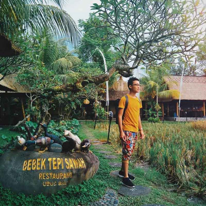 Restoran Dengan Pemandangan Sawah di Ubud