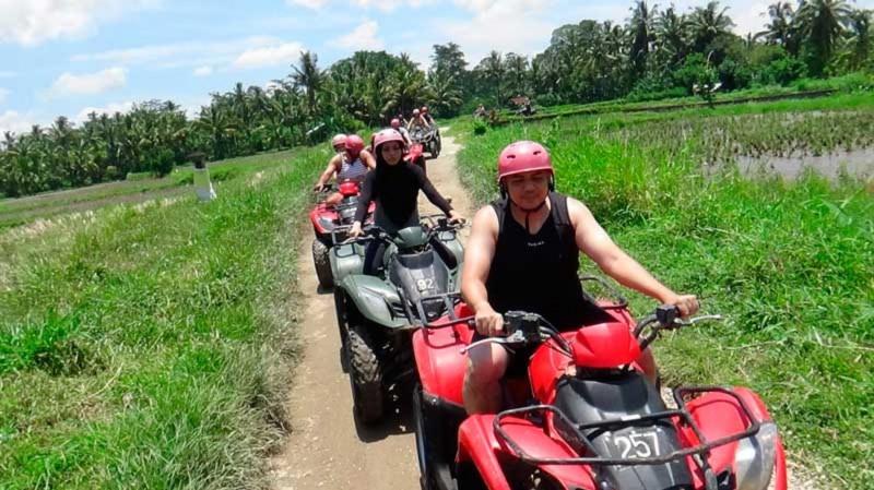 Rute Persawahan Di Kuber Bali Adventure