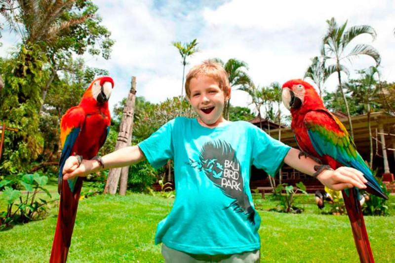 Wisata Taman Burung Bali