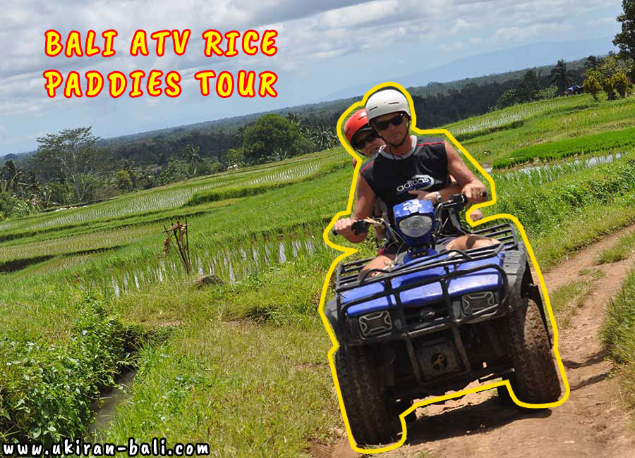 Bali Atv Rice Paddies Tour Reviews