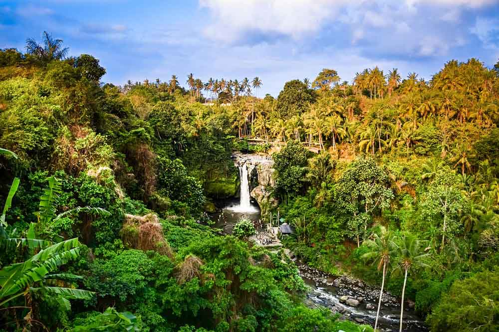 Bali Indonesia Tour Guide and Private Transport