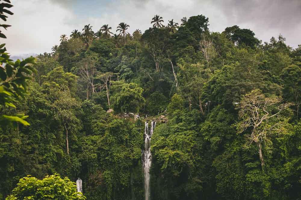Sekumpul Waterfall Entrance Fee