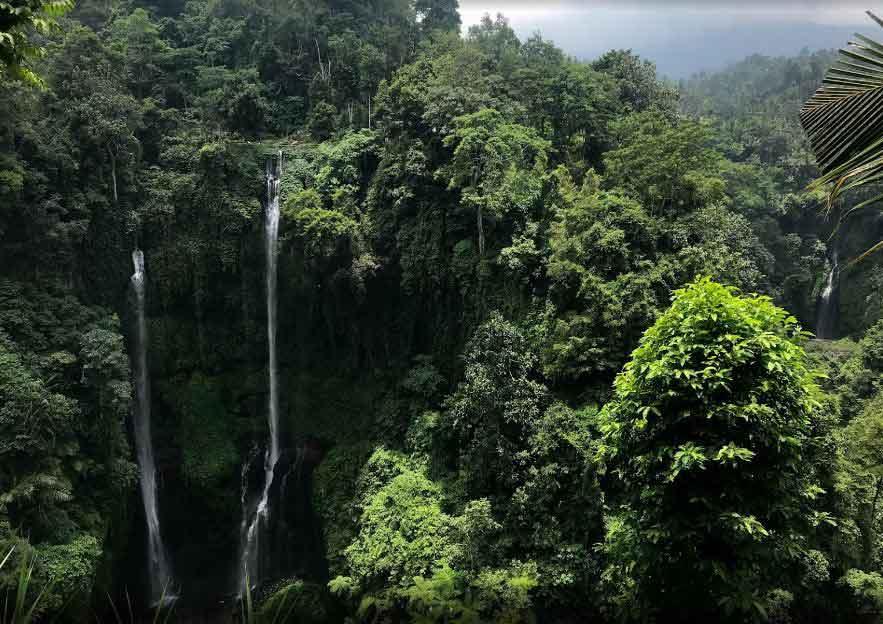 North Bali Waterfall Tour
